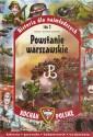 Powstanie Warszawskie. Seria: Kocham Polskę
